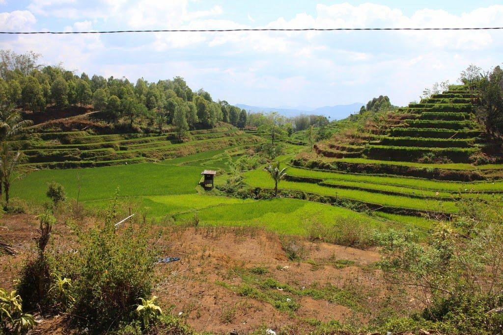 Suites, Sommes Arithmétiques, Géométrique, Malino, Indonésie