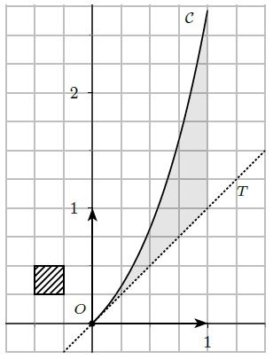 Primitives, exponentielle, convexité, tangente, courbe, terminale