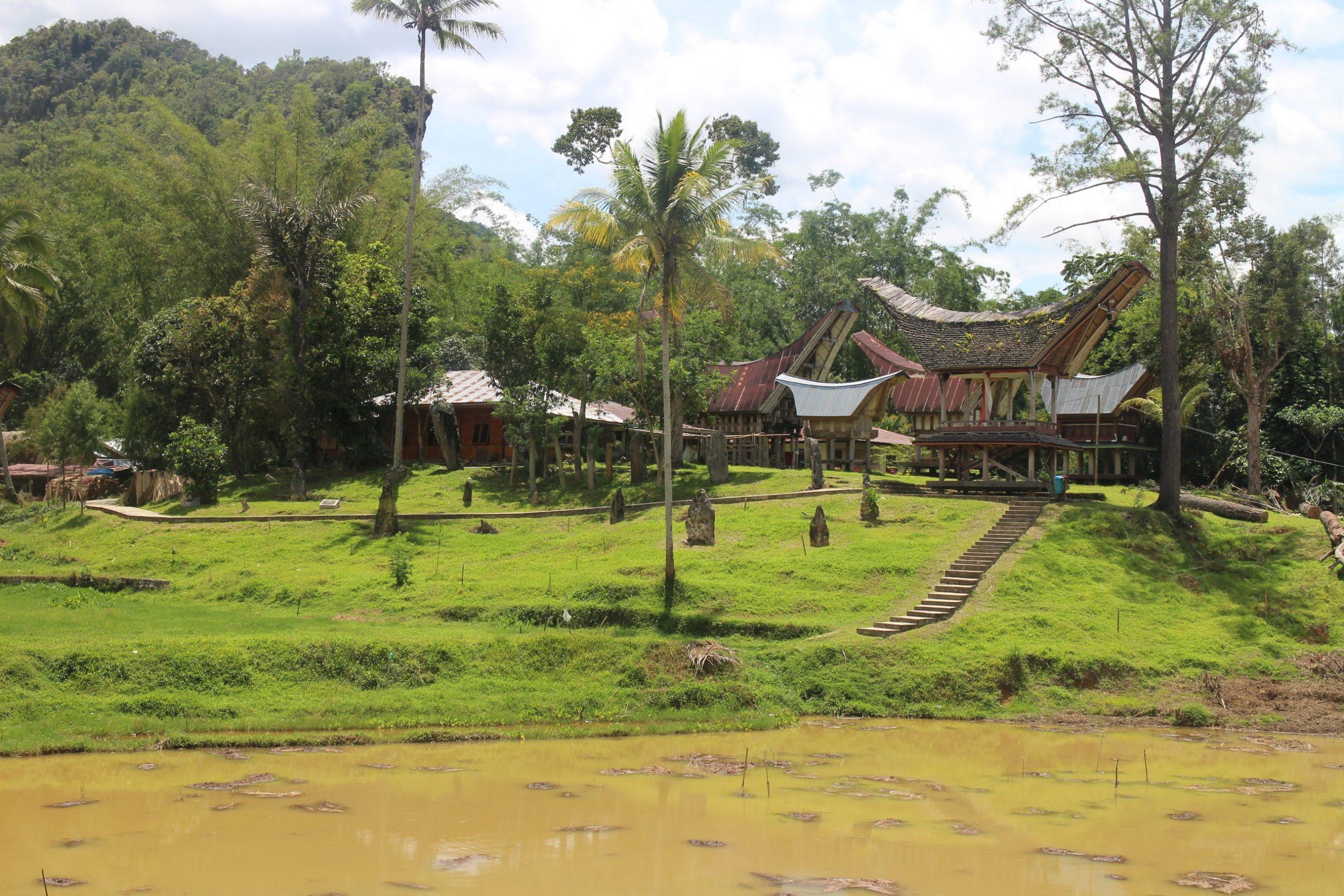 Produits scalaires, coordonnées, cosinus, hauteur, aire, ensemble, première, Kete Kesu, Toraja